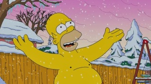 homer-simpson-top-surgery