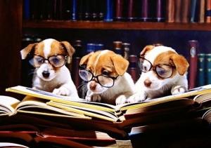 legal-scholars