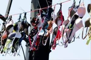 bras-across-the-bridge
