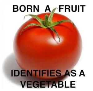 butch-tomato